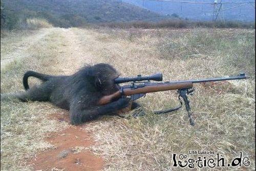 23302-sniper-affe.jpg