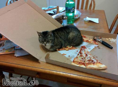 Mein Pizzastück