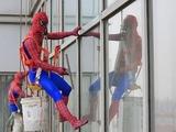 Spidermann als Fensterputzer