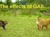 Der Gaseffekt
