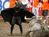 Batman vs Stier