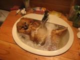 Hund nimmt ein Bad