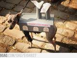 Eine Pupsmaschine