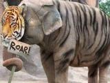 Tigerfant