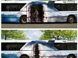 Gefährlicher Bus