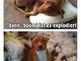 Explodierendes Kissen