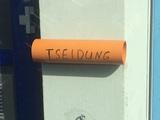 Tseidung