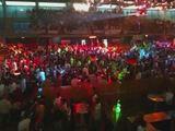 Partypeitsche - Deutschland es wird Zeit