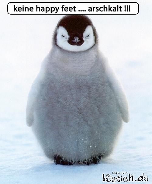 Unglücklicher Pinguin