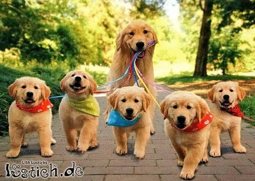 Mit den Kindern spazieren gehen