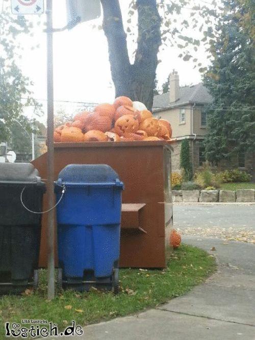 Der Tag nach Halloween