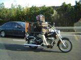 Fliegenschutz für Motorradfahrer