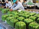 Eckige Melonen