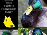 Die Entenverschwörung