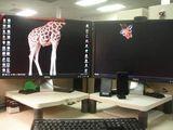 Giraffendeskop