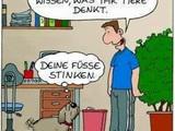 Was Hunde denken