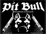pitbull88